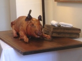One of the pigs